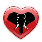 Интернет-магазин Elefante on My World.