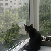 Konstantin Vladimirov on My World.
